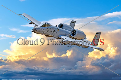 "A-10-USAF-OT 0010 A Fairchild Republic A-10 Thunderbolt II ""Warthog"" OT code USAF flying tank buster military airplane picture by Peter J  Mancus     DONEwt"