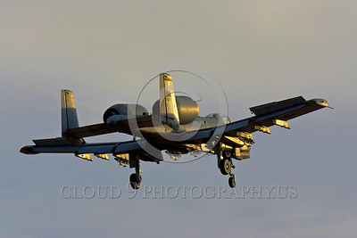 A-10USAF 00012 A landing Fairchild A-10 Thunderbolt II USAF attack jet WA code military airplane picture by Peter J Mancus