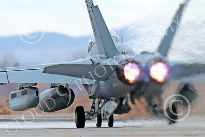 AB-EA-18GUSN 00008 A Boeing F-18G Growler USN takes-off in afterburner NAS Fallon 11-2013 military airplane picture by Peter J Mancus