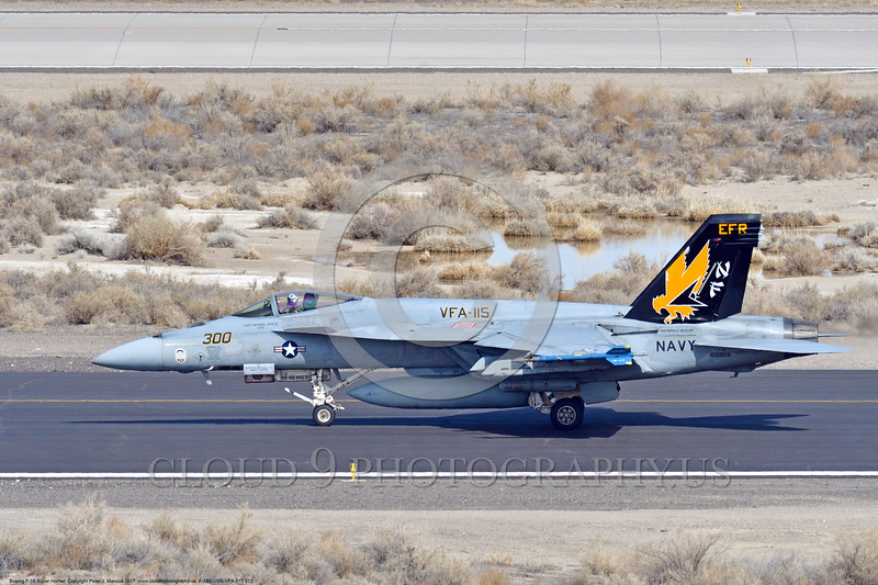 F-18E-USN-VFA-115 0013 A Boeing F-18E Super Hornet USN jet fighter 166859 VFA-115 EAGLES commanding officer's airplane USS Ronald Reagan rolls out after landing at NAS Fallon 3-2017 military airplane picture by Peter J Mancus     DONEwt