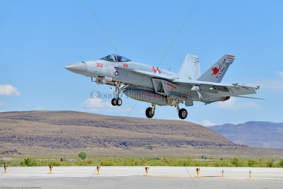 F-18E-USN-VF-131 005 A Boeing F-18E Super Hornet jet fighter USN 168909 VF-131 WILDCATS CAG USS Dwight Eisenhower AC code landing at NAS Fallon 7-2019, military airplane picture by Peter J  Mancus     851_0124     Dwt