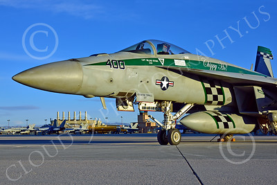 Boeing F-18E-USN 00207 Close up of nose on a static Boeing F-18E Super Hornet USN 166901 VFA-195 DAMBUSTERS commanding officer's airplane CHIPPY HO USS George Washington NF code at NAS Fallon 2-2015 military airplane picture by Peter J Mancus