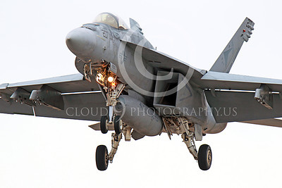 Boeing F-18E-USN 00004 A landing Boieng F-18E Super Hornet VFA-81 SUNLINERS USN jet fighter 11-2013 military airplane picture by Peter J Mancus