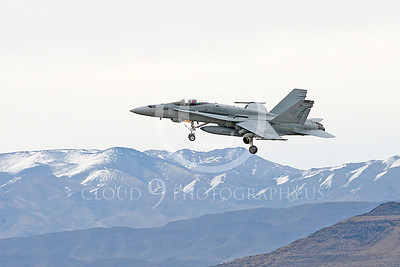Boeing F-18C-USN 00282 A landing Boeing F-18C Hornet VFA-83 RAMPAGERS USN jet fighter NAS Fallon 11-2013 military airplane picture by Peter J Mancus