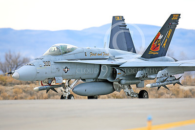 CAG 00081 A taxing colorful McDonnell Douglas F-18C Hornet VFA-113 STINGERS NAS Fallon 11-2013 military airplane picture by Peter J Mancus