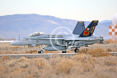 CAG 00045 A taxing colorful McDonnell Douglas F-18C Hornet VFA-113 STINGERS NAS Fallon 11-2013 military airplane picture by Peter J Mancus