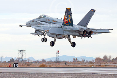 CAG 00092 A colorful McDonnell Douglas F-18C Hornet USN 164257 VFA-113 STINGERS USS Carl Vinson with missiles lands at NAS Fallon 11-2013 military airplane picture by Peter J Mancus