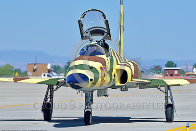 "F-5USN-VFC-13 0001 A Northrop F-5E Freedom Fighter USN VFC-13 SAINTS jet fighter in ""Banana"" livery taxis for take-off at NAS Fallon 4-2016 military airplane picture by Peter J  Mancus"
