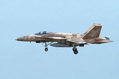 F-18USMC 00136 A landing McDonnell Douglas F-18C Hornet USMC 162407 VMFA-134 SMOKE 4-2002 military airplane picture by Michael Grove, Sr