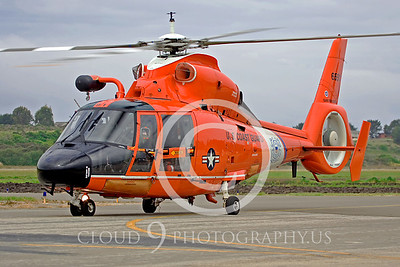 CG 00027 Eurocopter HH-65B by Dolphin by Peter J Mancus