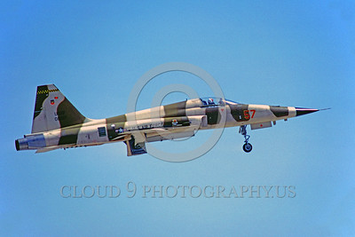 F-5USAF-Fly 00006 A Northrop F-5E Freedom Fighter USAF jet fighter 5-1979 military airplane picture by PeterJ Mancus
