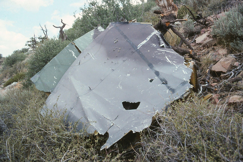 This large wing fragment still had a few vortex generators attached.