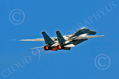 AB - F-14USN 00028 Grumman F-14 Tomcat US Navy by Peter J Mancus