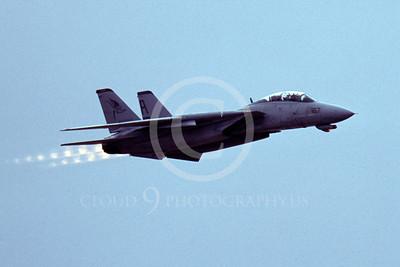 ABF14 00007 Grumman F-14 Tomcat US Navy by Peter J Mancus