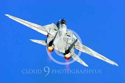 AB - F-14USN 00026 Grumman F-14 Tomcat US Navy by Peter J Mancus