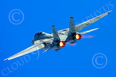 AB - F-14USN 00052 Grumman F-14 Tomcat US Navy 2004 by Peter J Mancus