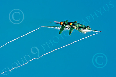 AB - F-14USN 00050 Grumman F-14 Tomcat US Navy 2004 by Peter J Mancus
