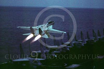ABF14 00002 Grumman F-14 Tomcat US Navy by Peter J Mancus
