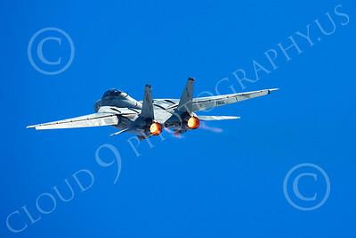 AB - F-14USN 00068 Grumman F-14 Tomcat US Navy 2004 by Peter J Mancus
