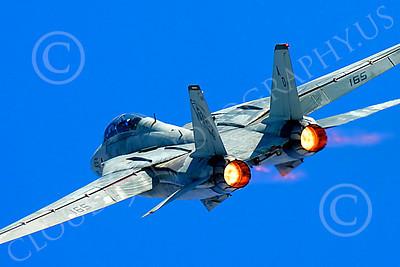 AB - F-14USN 00060 Grumman F-14 Tomcat US Navy 2004 by Peter J Mancus