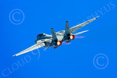 AB - F-14USN 00034 Grumman F-14 Tomcat US Navy 2004 by Peter J Mancus