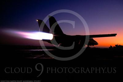 ABF14 00001 Grumman F-14 Tomcat by Peter J Mancus