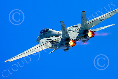 AB - F-14USN 00036 Grumman F-14 Tomcat US Navy 2004 by Peter J Mancus