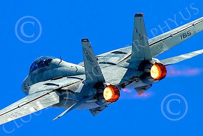AB - F-14USN 00040 Grumman F-14 Tomcat US Navy 2004 by Peter J Mancus