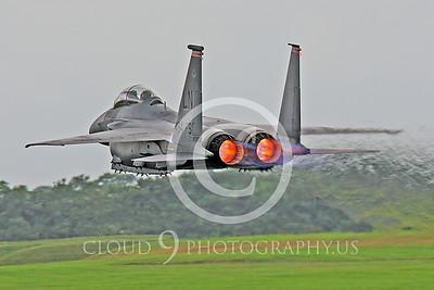 AB-F-15USAF 00004 McDonnell Douglas F-15E Eagle by Peter J Mancus