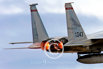 ABF15 00022 McDonnell Douglas F-15 Eagle Oregon Air National Guard 76043 by Peter J Mancus