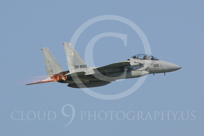 ABF15 00042 Japanese Self Defense Force McDonnell Douglas F-15 Eagle 928069 by Paul Ridgway