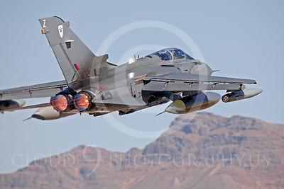 ABTorn 00014 Panavia Tornado by Peter J Mancus