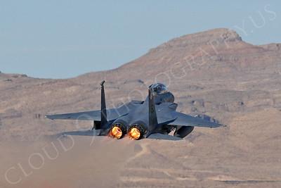 AB - F-15USAF 00146 McDonnell Douglas F-15 Eagle USAF Nellis AFB by Tim Wagenknecht