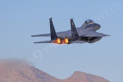 AB - F-15USAF 00116 McDonnell Douglas F-15E Strike Eagle USAF 860189 Nellis AFB by Tim Wagenknecht