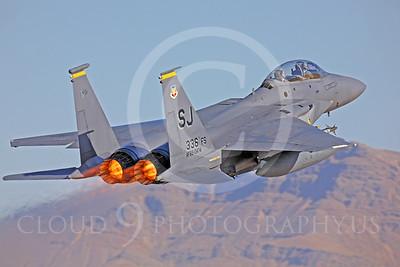 ABF15 00036 McDonnell Douglas F-15E Strike Eagle by Peter J Mancus