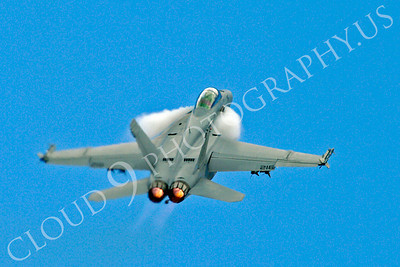 AB - F-18USN-S 00010 Boeing F-18 Super Hornet US Navy by Stephen W D Wolf