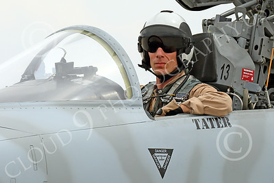 ACM 00324 A USN VFC-13 Saints pilot in his Northrop F-5E Freedom Fighter at NAS Fallon 7-2014 military airplane picture by Peter J Mancus