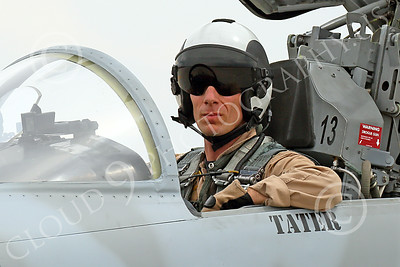 ACM 00325 A USN VFC-13 Saints pilot in his Northrop F-5E Freedom Fighter at NAS Fallon 7-2014 military airplane picture by Peter J Mancus