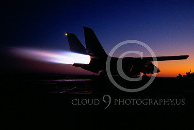 ACCSF14 00023 Grumman F-14 Tomcat by Peter J Mancus