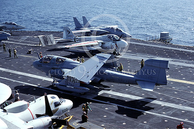 ACCSEA6B 00005 Grumman EA-6B by Peter J Mancus