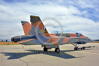 F-18Forg 00300 A static Canadian Armed Forces McDonnell Douglas CF-18 Hornet jet fighter 188761 with rare Battle of Britian color scheme military airplane picture at 5-2015 Chino air show by Peter J Mancus