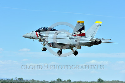 F-18F-USN-VFA-2 0004 A colorful Boeing F-18F Super Hornet jet fighter USN 166804 VFA-2 BOUNTY HUNTERS CAG USS Carl Vinson lands at NAS Fallon 4-2016 military airplane picture by Peter J  Mancus