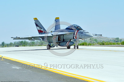 F-18F-USN-VFA-2 0003 A colorful Boeing F-18F Super Hornet jet fighter USN 166804 VFA-2 BOUNTY HUNTERS CAG USS Carl Vinson taxis at NAS Fallon 4-2016 military airplane picture by Peter J  Mancus