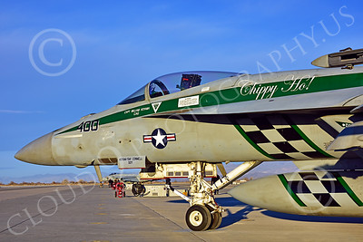 Boeing F-18E-USN 00196 Close up nose of a static Boeing F-18E Super Hornet USN 166901 VFA-195 DAMBUSTERS commanding officer's airplane CHIPPY HO USS George Washington NF code at NAS Fallon 2-2015 military airplane picture by Peter J Mancus