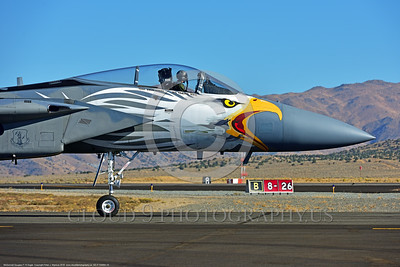EE-F-15ANG 0015 Close up of an eagle head nose art rare colorful paint scheme McDonnell Douglas F-15 Eagle air superiority jet fighter Oregon Air National Guard 79041 at Stead for Reno Air Races 2016 military airplane picture by Peter J  Mancus