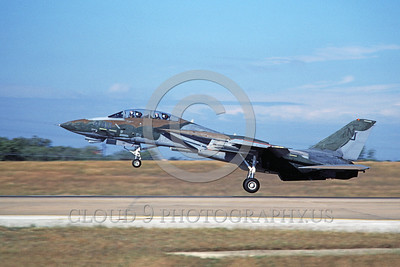 F-14USN-CAM 0010 A landing Grumman F-14 Tomcat USN VF-124 GUNFIGHTERS 11-1986 military airplane picture by Michael Grove, Sr
