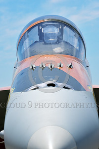 F-18Forg 00301 Close up view of the nose of a static Canadian Armed Forces McDonnell Douglas CF-18 Hornet jet fighter 188761 with rare Battle of Britian color scheme military airplane picture at 5-2015 Chino air show by Peter J Mancus