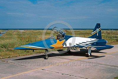 EE-F-5Forg 00010 A static colorful Northrop F-5E Freedom Fighter Hellenic Air Force 6-2004 military airplane picture via African Aviation Slide Service