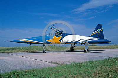 EE-F-5Forg 00011 A satic colorful Northrop F-5E Freedom Fighter Hellenic Air Force jet fighter 6-2004 military airplane picture via African Aviation Slide Service