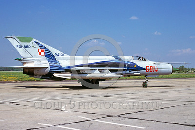 EE-MiG-21 00005 A static Mikoyan-Guryevich MiG-21 Fishbed Polish Air Force jet fighter 8614 5-2000 military airplane picture by Marinus Tabak